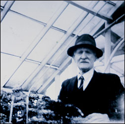 Harry Cole in one of his greenhouses
