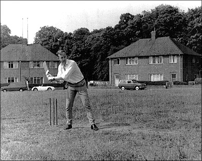 Cricket on the Green 1971