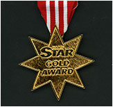 Picture of Star Award